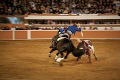Provincia Juriquilla_2011 - 16 (Eduardo de la Garma de la Rosa) Tags: canon toros corrida lida bestia 2011 rejoneador pablohermosodemendoza eduardodelagarma mamonet