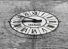 IMG_7379a (1.11 Giovanni Contarelli) Tags: bw italy italia libri marche 450d canoneos450d peglio