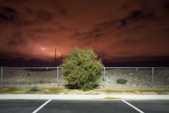 (andrew sea james) Tags: longexposure red sky tree night clouds landscape bush nikon lasvegas nevada 28mm nikkor f28 d600