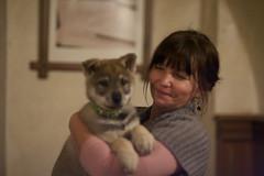 the kindness of strangers (Timoleon Vieta II) Tags: people dog wolf europe czech little good diary bad newyear east bonding csw stangers racists vlcak timoleon