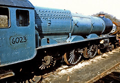 6023. (curly42) Tags: king railway steam barry scrapyard preserved preservation withdrawn gwr 6023 oou