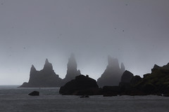 IMG_9929.jpg (buzz-art) Tags: iceland south reynisdrangar