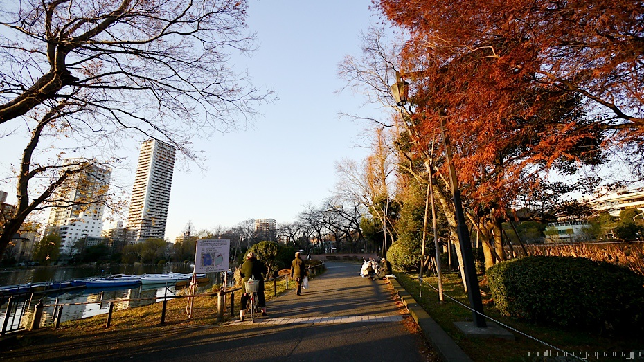 Ueno in the Winter