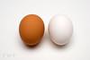Get Cracking (WanderWorks) Tags: shadow food brown white raw natural shell minimal whole eggs 365 organic minimalist 2365 3652 3652013 dsc6046b1nmg