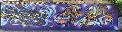 Dees Asie (Asie) Tags: color ex colors graffiti 3d asie graff dees fros quilpué wildstile