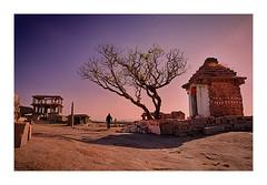 Tree and Temple (Swasti Verma) Tags: travel india heritage architecture nikon karnataka hampi incredibleindia heritageindia swasti d7000