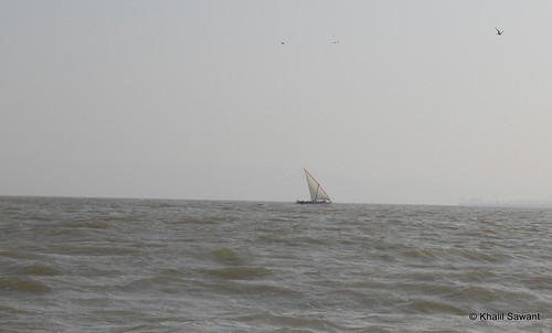 Solitary On The High Sea
