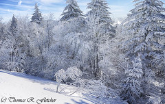 Winter along the Highland Scenic Highway (travelphotographer2003) Tags: winter usa snow cold weather clouds westvirginia relaxation exploration idyllic appalachia blackmountain freshness appalachianmountains purity tranquilscene alleghenymountains beautyinnature route150 pocahontascounty nationalscenicbyway highlandscenichighway