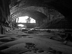 Footprints #2 (CamraMan.) Tags: threebridges glingerbank longtown cumbria footprints otter ©camaman ©davidliddle