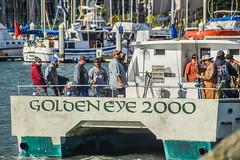 golden eye 2000 (pbo31) Tags: california nikon d810 color july 2016 summer bayarea boury pbo31 berkeley marina sail boat eastbay alamedacounty golden eye 2000 fishing fisherman ocean trip men