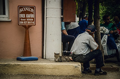 Soner (Melissa Maples) Tags: ibrad turkey trkiye asia  nikon d5100   nikkor afs 18200mm f3556g 18200mmf3556g vr ormana animal kitty cat trke text sign turk man