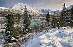 664A2381 b (Ed Boudreau) Tags: alaska alaskalandscape alaskamountains water winter winterscene winterscape landscape landscapephotography snow conifer