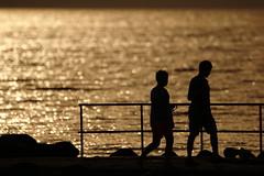 People on stone pier (steninge) (m.rsjoberg) Tags: canon70d sverige sweden stonepier stenpir steninge halmstad hav vatten water siluett silhouette