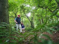 P8270859 (gezzajax) Tags: ardgillan skerries forest woods trees walk walking toddler child granddaughter granddad green leaves park trail dublin ireland