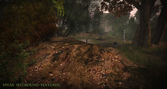 New 3D Ground Texture - Autumn Ground  (Vita Camino) Tags: sl secondlife vita girdini giardini textures ground sim terrain builder landscaping land autumn fall dry grass slur new 2016 3d seamless camino