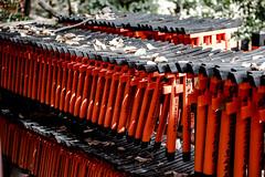 JP2016_11491 (hitorijun) Tags: japan kyoto  canon 5dmark3 holiday        hitorijun red