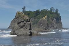 Sea Mounts at Ruby Beach 4 (Tynan Phillips) Tags: nature nikon nikond90 d90 dslr rubybeach washington washingtonstate washingtoncoast ocean wave waves coast sea beach landscape oceanscape usa america seamounts seamounts rock rocks geology landscapes seascape