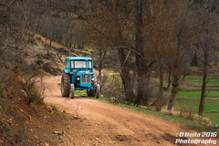 Blue Tractor (dneila) Tags: blue tractor old trees forest beautiful town spain country rural farm pueblo