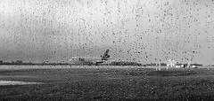 Through The Rain (Monica.Polladore) Tags: blackandwhite aircraft airplane rain weather raindrops sky noir airport