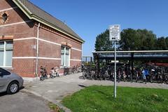 IMG_4028-www.PjotrWiese.nl