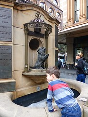 Not falling into the well (Snuva) Tags: qvb queenvictoriabuilding nsw sydney australia