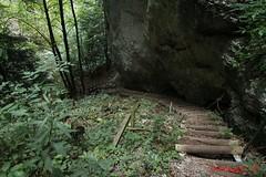 IMG_8926 (Pfluegl) Tags: niedersterreich sterreich austria lower wandern hikking hiking wanderlust natur nature autumn summer rock steine geology geologie steinwandklamm klamm gorge canyon