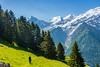 DSC_9552 (Costi Jacky) Tags: france naturereserve parcdemerlet