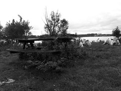 Noorderplassen Almere The Netherlands (puliMexNed) Tags: flevoland almere bw