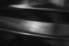 Mambreton Homestay, Day 3, Kri Island, Papua Island, Indonesia (ARNAUD_Z_VOYAGE) Tags: rajat ampat islands papua island indonesia landscape boat sea southeast asia people nature amazing color mountain massif volcano sunrise town moni archipelago snorkeling sunset bird paradis peninsula province sorong waisai richest marine biodiversity coral fish village