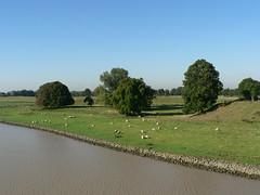 Ems Ufer von der Jann-Berghaus-Brcke aus (achatphoenix) Tags: water wasser eau aqua eastfrisia unterwegs ostfriesland ontour inpassing enroute h2o