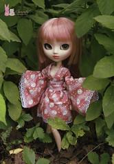 Promenade (Shamujinn) Tags: pullip doll poupe groove full custo fc pink rose kimono rabbit japan clothing lapin cancan cancanjseries wig rewigged hair promenade forest siamoise siamese shamujinn ooak obitsu custom