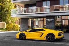 Summer Sun. (Sawek Sulik) Tags: lamborghini lambo aventador lp7004 giallo yellow summer italian supercar automotive car auto v12 hypercar warsaw poland 2016 nikon sawek sulik