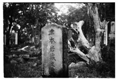 Japanese headstone, Thursday Island cemetery (electricnerve) Tags: bw film bokeh swirly werra torresstrait thursdayisland polypan