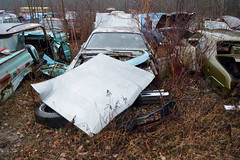 DSC_0056 v2 (collations) Tags: ontario abandoned autos derelict automobiles rockwood junkyards wreckers autowreckers autograveyards mcleansautowreckers carcemeteries