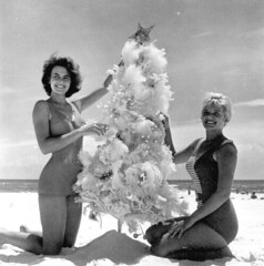 Meriam De Shazo and Kenna Morris modeling with a Christmas Tree on Pensacola Beach (State Library and Archives of Florida) Tags: sand holidays florida modeling models christmastree beaches pensacolabeach escambiacounty jimstokes statelibraryandarchivesofflorida departmentofcommercecollection meriamdeshazo kennamorris