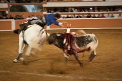 Provincia Juriquilla_2011 - 18 (Eduardo de la Garma de la Rosa) Tags: canon toros corrida lida bestia 2011 rejoneador pablohermosodemendoza eduardodelagarma mamonet