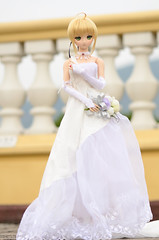 DSC_8024 (TonyBSD) Tags: wedding hk girl hongkong nikon doll dress saber bjd dslr dd dollfie volks   tsingmabridge    tsingyi  dollfiedream tingkaubridge lantaulink     lantaulinkvisitorscentre d7000