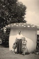 Icecreamtoadstool 1950 (streamer020nl) Tags: holland ice mushroom ed room father arnhem icecream toadstool nl paddenstoel 1950 paddestoel ruud ijsje rheden