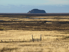 Golden gate (h) Tags: grass fence landscape golden iceland gate mount bleak plain giring hli stradmon