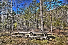 Old Picnic Tables on trail to Gregory's Cave (Country Squire) Tags: geotagged nationalpark picnic tn jan tables cadescove greatsmokymountain 2013 neargregoryscave