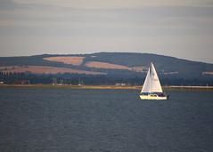 IMG_3389 (HannahBarnes79) Tags: sailing yacht gales cruiser cruisers tsc 2016 langstoneharbour tudorsc tudorsailingclub