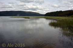 Lake Paulina (Ale*) Tags: bend oregon newberrycrater newberry nationalvolcanicmonument volcano volcanism lake water crater lava basalt ale hank y