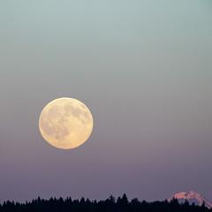 Mondaufgang (Fritz Lehmann) Tags: mond eiger mondaufgang