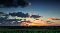 Sunset_02 (Baking Adventure) Tags: sunset colors nature light dark forest clouds photography beautiful israel raanana