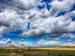 Verano (la_magia) Tags: verano calor nubes camposdecastilla regadio regar summer hot clouds azul amarillo coloresdeverano castillaylon espaa