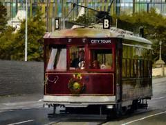 Taking the B Tram (Steve Taylor (Photography)) Tags: city tour tram b 15 floral wreath rail art digital building cerise red green cable man newzealand nz southisland canterbury cbd christchurch trees texture