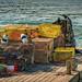 Lobster Traps (Bar Harbor, Maine) *EXPLORED*