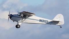 Taylorcraft BC12-D N43122 (ChrisK48) Tags: 1946 aircraft airplane dvt kdvt n43122 phoenixaz phoenixdeervalleyairport taylorcraftbc12d