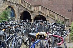 2016-08-27: Summer Parking (psyxjaw) Tags: cambridge university college bikes bike bicycle rack racks stone stairs sidneysussex
