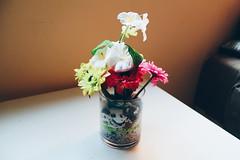 Flowers in my livingroom (Cherry Yuki) Tags: interior ramo flor planta flowers